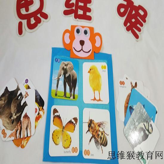 幼儿园区角区域游戏活动玩教具材料 幼儿园动物世界主题游戏教具